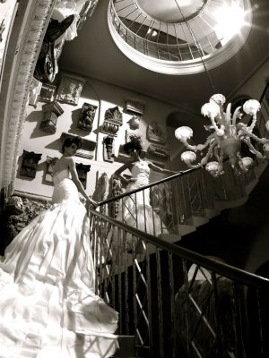 Wedding Gowns - Couture Gallery